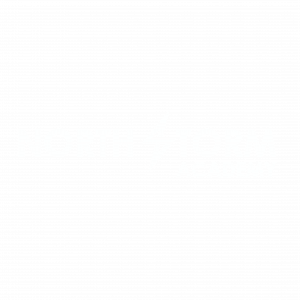 NORTH storm academy logo white png